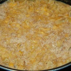 Pasta and Tuna Cheddar Bake recipe
