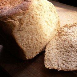 Buttermilk Honey Wheat Bread (Abm) recipe