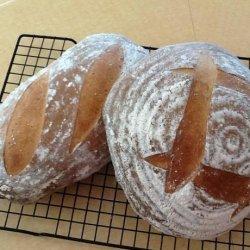 Sourdough Rosemary Potato Bread recipe