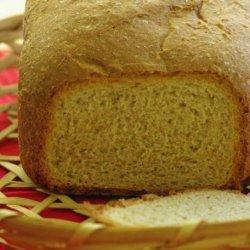 Good 100% Whole Wheat Bread recipe