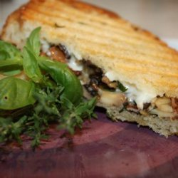 Grilled Wild Mushroom and Brie Cheese Sandwich recipe