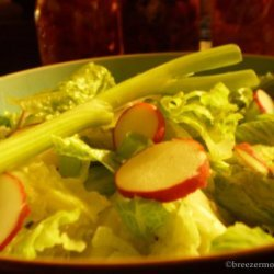 Salad With Radish and Green Onions recipe