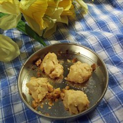 Easy Bake Oven peanut butter cookies recipe