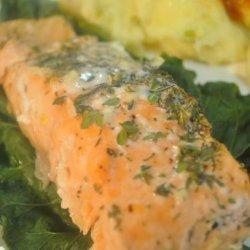 Lemon Herb Salmon recipe