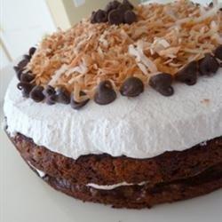 Quick Chocolate Chip Cake recipe