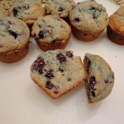 Muffins Base recipe