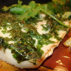 Cilantro Crusted Mahi Mahi recipe