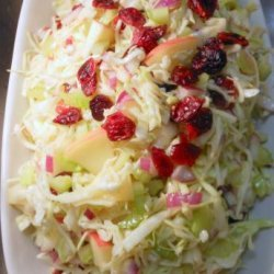 Coleslaw With Apples & Dried Cranberries recipe