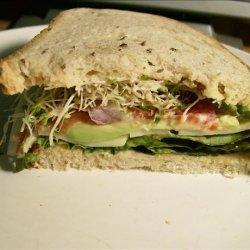 Tomato, Cheese, and Avocado Sandwich recipe