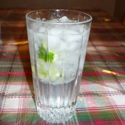 Vodka Tonic recipe