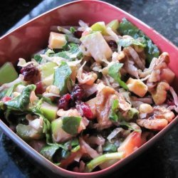 Apple Salad With Cranberry Vinaigrette recipe