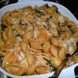 Baked Shells With Fresh Spinach and Pancetta recipe