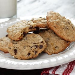 Low Fat Cocoa Cookies recipe