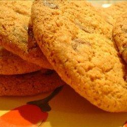 Spicy Choc Chip Cookies recipe