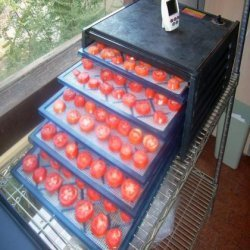 Dehydrating Tomatoes recipe