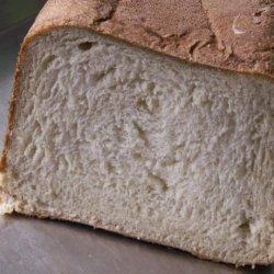 Sourdough French Bread - Abm (Amish Bread Starter) recipe