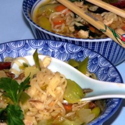 Chicken Noodle Soup With an Asian Touch recipe