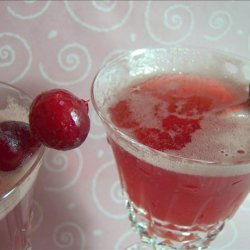 Sparkling Cranberry Punch recipe
