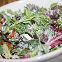 Spinach Salad With Cranberries, Pecans, Bacon, and Blue Cheese recipe