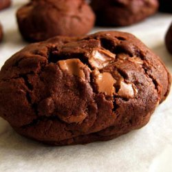 Chocolate Cookies With Chocolate Covered Raisins recipe