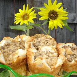 Appetizer Meat Pies recipe