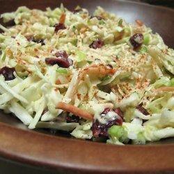 Rene's Coleslaw recipe