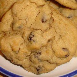 Chewy Raisin Cookies recipe