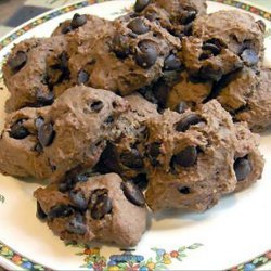 Chocolate Oat Bran Cookies With Chocolate Chips recipe