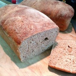 Jane's Totally Wheat Bread (Using Food Processor) recipe