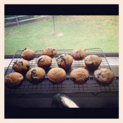 Blueberry Muffins (1 Ww Point Each) recipe