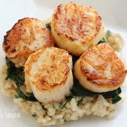 Scallops and Spinach With Parmesan Sauce recipe