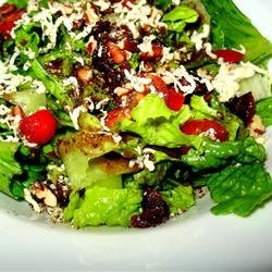 Blue Cheese and Dried Cranberry Tossed Salad recipe