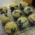 Gluten, Dairy & Cane Sugar Free Blueberry Muffins recipe