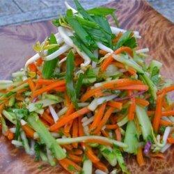 Vegan Carrot Broccoli and Bean Shoot Salad recipe