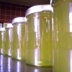 Kiwi Jelly recipe