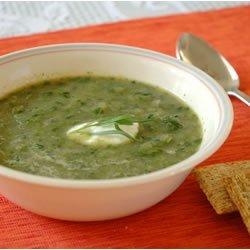 Lettuce and Tarragon Soup recipe