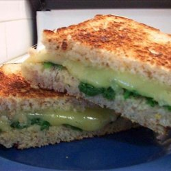 Spinach and Havarti Sandwiches on Multigrain Bread recipe