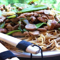 Chow Mein With Shrimp and Pork recipe
