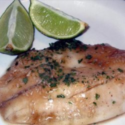 Catfish Fillets in Ginger Sauce recipe