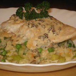 Sea Perch on a Bed of Risotto With a Morel Sauce recipe