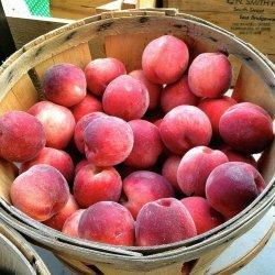 Easy Batter Fruit Cobbler recipe