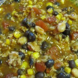 Turkey & Bean Taco Soup recipe