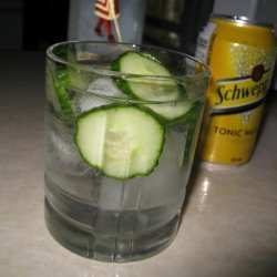 Cucumber Gin and Tonic recipe