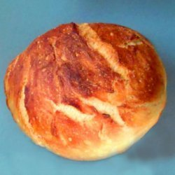 Fast No Knead Bread With Easy Cleanup recipe