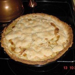 Pot Pie     #1 Alaska Chicken Pot Pie recipe