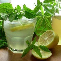 Old Fashioned Lemon Balm and Lemon Verbena Lemonade Syrup recipe