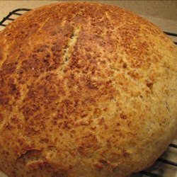 No Knead Sourdough Flax Seed Bread recipe