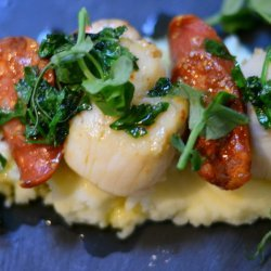 Seared Scallops With Cauliflower Puree recipe