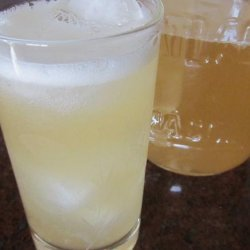 Water Kefir recipe