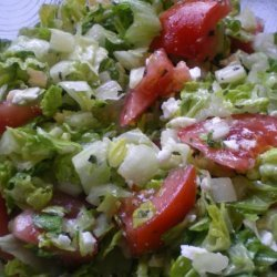 Greek Salad Dressing and Hummus Ala the Red Fez recipe